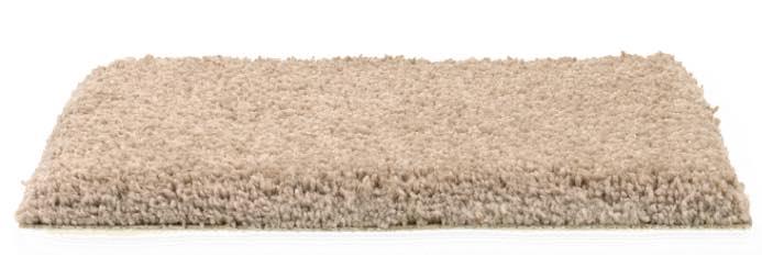 Med pile height carpet | Choice Floor Center, Inc.