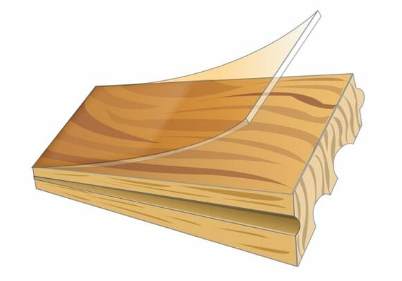 hardwood_solid_illustration